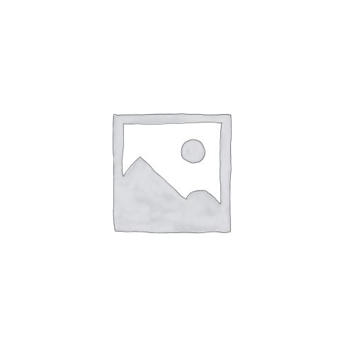 Sodium Pyruvate (100 mM) 【11360070】